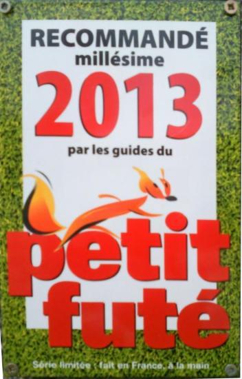 Petit Futé 2013